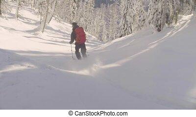 bas, neigeux, forest., colline, équitation, homme