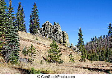Basalt Outcrop White Mountains AZ