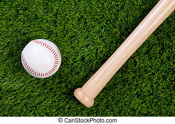 Baseball and bat on grass