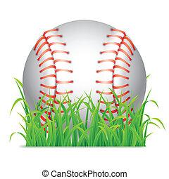 baseball, ball.