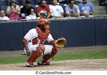 Baseball Catcher - Basaball catcher waiting for the picth.
