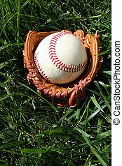 baseball, e, guanto