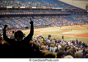 Baseball Fans - Fan celebrating a team victory at a baseball...