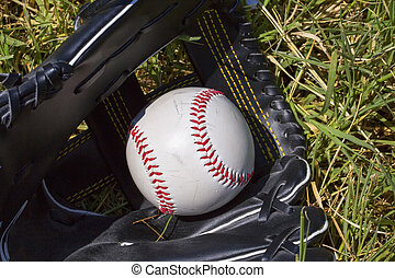 Baseball in glove over grass