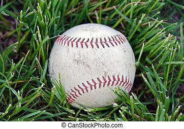 baseball in grass