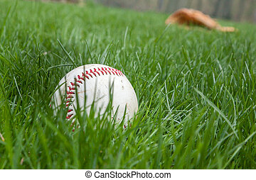 Baseball in Grass with Glove behind - A baseball sits in the...