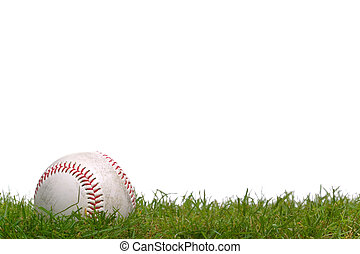 Baseball in the grass - A baseball sitting in the grass, ...