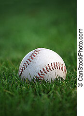 An old well-used baseball sitting in the grass of the outfield. Plenty of space for text. Selective focus on red stitches.