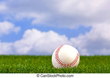Baseball on grass - Photo of a baseball on grass with sky...