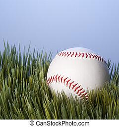 Baseball on grass.