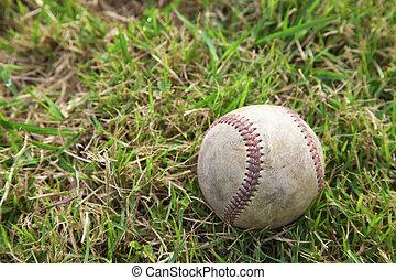 Baseball on the Grass field