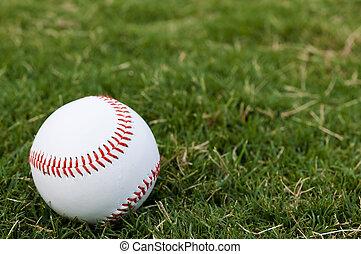 baseball, på, felt