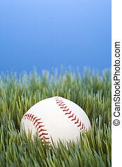 Baseball resting in grass.