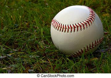 Baseball sitting on grass.