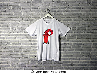 Basel-Landschaft flag on shirt and hanging on the wall with brick pattern wallpaper.