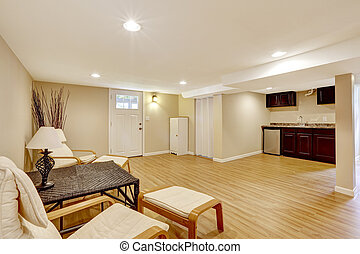 Basement mother-in-law apartment. Living room and kitchen area