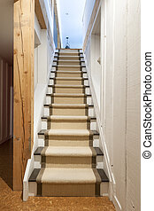 Basement stairs in house - Stairway to basement in home...