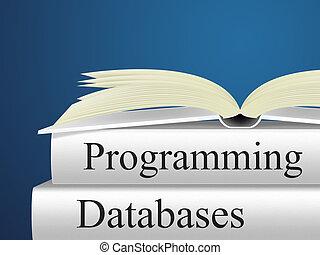 bases de datos, programación, indica, software, diseño, y,...