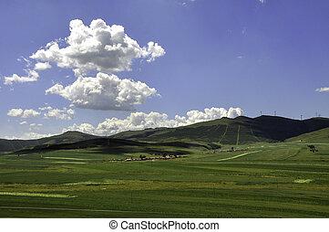 Bashang Prairie