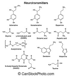 Basic neurotransmitters - Structural chemical formulas of...