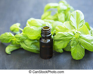 Basil Essential Oil in a Bottle with Basil Herb Leaves