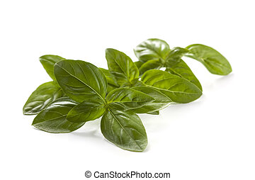 Basil - Fresh basil sprigs, isolated on white. Focus on ...