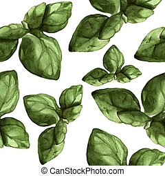 Basil - Hand Painted Watercolour - Culinary herbs - hand...