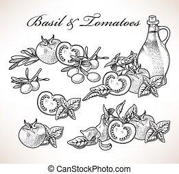 basilic, tomates