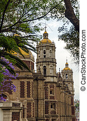 Basilica and Trees - Old Basilica of our Lady of Guadalupe...