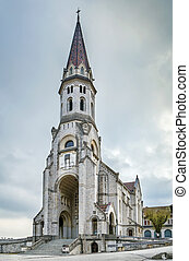 Basilica of the visitation, Annecy, France