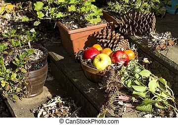 Basket apples on Steps