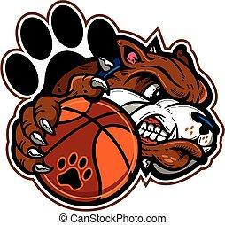 basket-ball, bouledogue