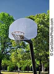 A basket ball hoop set up in the country