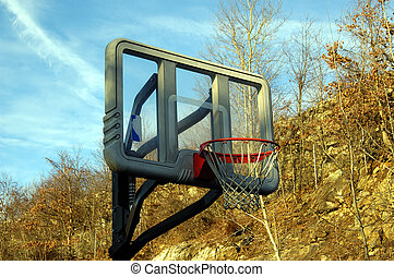 Basket ball hoop against a nature setting outdoors