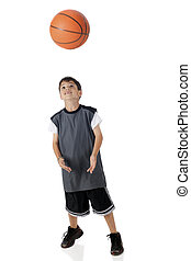 basket-ball, prise
