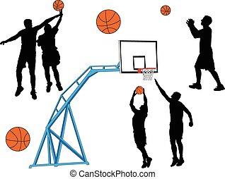 basket-ball, vecteur,  -