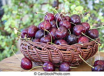 Basket filled with freshly cut cherries
