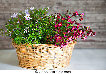 Basket Filled with Pink and White Flowers