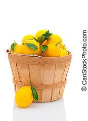 Basket Full of Lemons