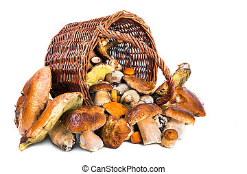 Basket full of mushrooms on a white background