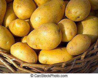 wicker basket full of young fresh potatoes