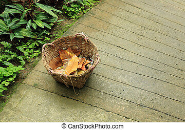 basket in garedn with dry leaf