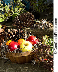 Basket of Apples in Fall