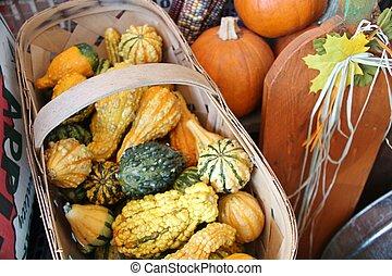 Basket of Autumn gourds