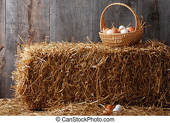 Basket of eggs on hay bale in a barn