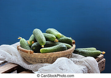 basket of fresh cucumbers on a blue background. Rural still life.