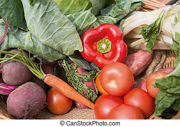 Basket of fresh organic veg on a sunny day