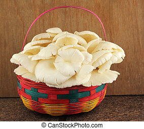 Basket of mushrooms in kitchen