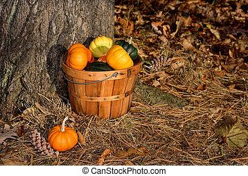Basket of Small Pumpkins