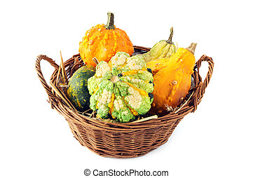 basket with autumn decoration mini pumpkins on white isolated background